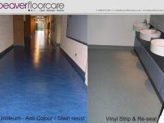 Linoleum Floor Cleaning