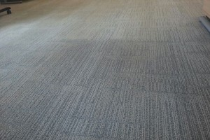 clean grey carpet