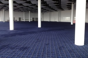 clean blue patterned carpet