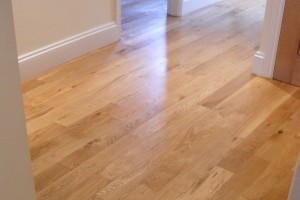 clean wood / laminate floor
