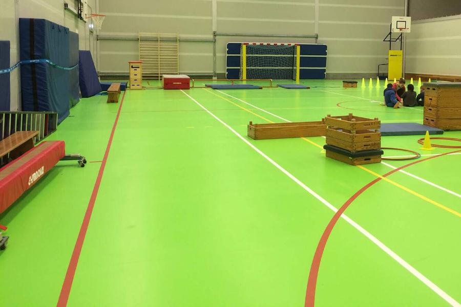 Green Sports Floor